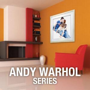 Andy Warhol Series