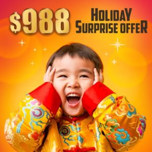 SENS Holiday Surprise Offer